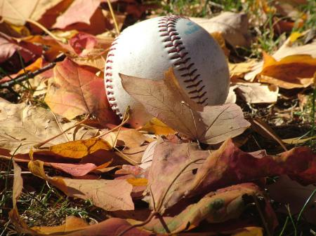A baseball lies in a freshly fallen leaves